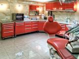 Клиника Элефант, фото №6